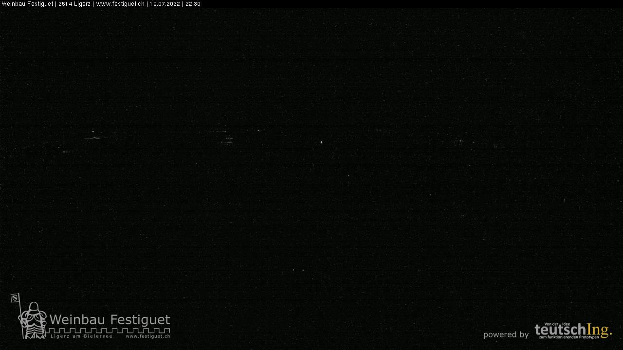 Schweiz - Ligerz - Weinbau Festiguet
